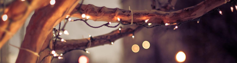 proponemos-navidad-gelt